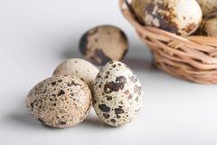 organic quail bird eggs stock photo