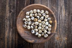 organic quail eggs stock images