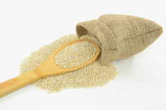 Organic Quinoa. Stock Photo