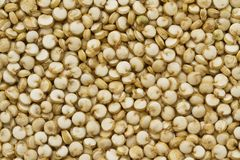 Organic Quinoa. Top view of quinoa seeds. Can be used as background royalty free stock photography