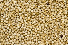 Organic Quinoa. Top view of quinoa seeds. Can be used as background stock image