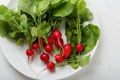 Organic radish on white plate. Fresh vegetables Stock Photo