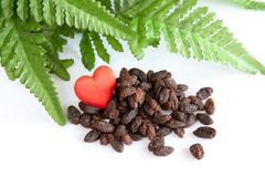 Organic raisins. Heart and green leaves on white background Stock Images