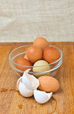 Organic and range free chicken eggs Stock Images