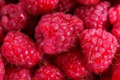 Organic raspberries background Stock Photos