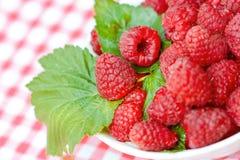 Organic raspberries Royalty Free Stock Image
