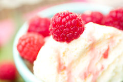 Organic Raspberries on Vanilla Icecream Royalty Free Stock Photography