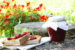 Organic raspberry jam Stock Images