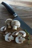 Organic raw button mushrooms Stock Images