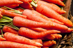 Organic Raw Carrots Royalty Free Stock Image