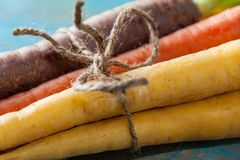 Organic Raw Carrots Bunch Tied Close Up On Colorful Blue Wood Te Stock Photos