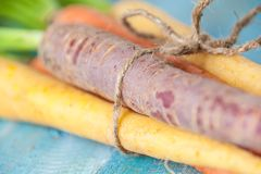 Organic Raw Carrots Bunch Tied Close Up On Colorful Blue Wood Te Stock Images