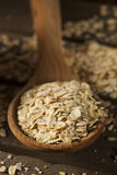 Organic Raw Dry Oats Stock Photos