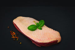 Organic raw duck breast fresh from the farm on slate stone plate. On black background Royalty Free Stock Photos