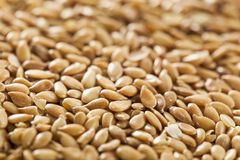 Organic Raw Flax Seeds Stock Photography