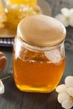 Organic Raw Golden Honey Comb Stock Photo