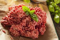 Organic Raw Grass Fed Ground Beef Stock Image