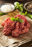 Organic Raw Grass Fed Ground Beef Stock Images