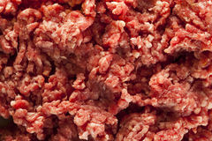 Organic Raw Grass Fed Ground Beef Royalty Free Stock Photo