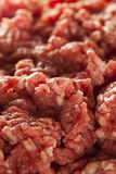 Organic Raw Grass Fed Ground Beef Royalty Free Stock Images