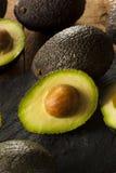 Organic Raw Green Avocados Royalty Free Stock Image