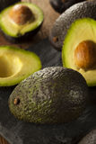 Organic Raw Green Avocados Royalty Free Stock Photography