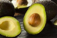 Organic Raw Green Avocados Stock Image