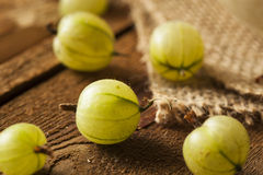 Organic Raw Green Gooseberries Stock Photography