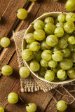 Organic Raw Green Gooseberries Stock Images