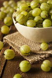 Organic Raw Green Gooseberries Stock Photos