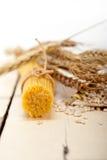 Organic Raw italian pasta and durum wheat Stock Images