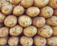 Organic raw potatoes closeup Stock Images