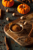 Organic Raw Pumpkin Spice Royalty Free Stock Image