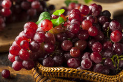 Organic Raw Red Grapes Royalty Free Stock Photos
