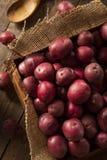 Organic Raw Red Potatoes Stock Photo
