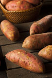 Organic Raw Sweet Potatoes Stock Images