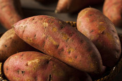 Organic Raw Sweet Potatoes Royalty Free Stock Photo