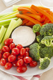 Organic Raw Vegetables with Ranch Dip Stock Photography