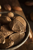 Organic Raw Whole Brazil Nuts Royalty Free Stock Photos