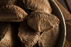Organic Raw Whole Brazil Nuts Stock Photography