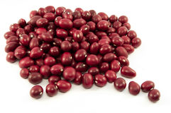 Organic red beans from Mexico Stock Photography