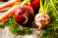 Organic red beets with green leaves on an old wooden table. Rust Royalty Free Stock Image