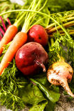 Organic red beets with green leaves on an old wooden table. Rust Stock Photography