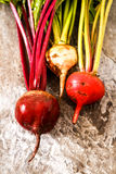 Organic red beets with green leaves on an old wooden table. Rust Stock Photos