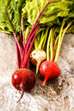 Organic red beets with green leaves on an old wooden table. Rust Stock Images