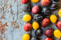 Organic red, blue and yellow plums on the blue  wooden table Stock Photography