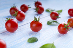 Organic Red Cherry Tomatoes on blue Background. Red tomatoes and Royalty Free Stock Photography