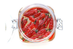 Organic red chili in a jar with oil Royalty Free Stock Images