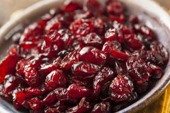 Organic Red Dried Cranberries Stock Photography