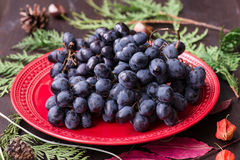 Organic red grapes and fir branch with Christmas decorations Stock Photo